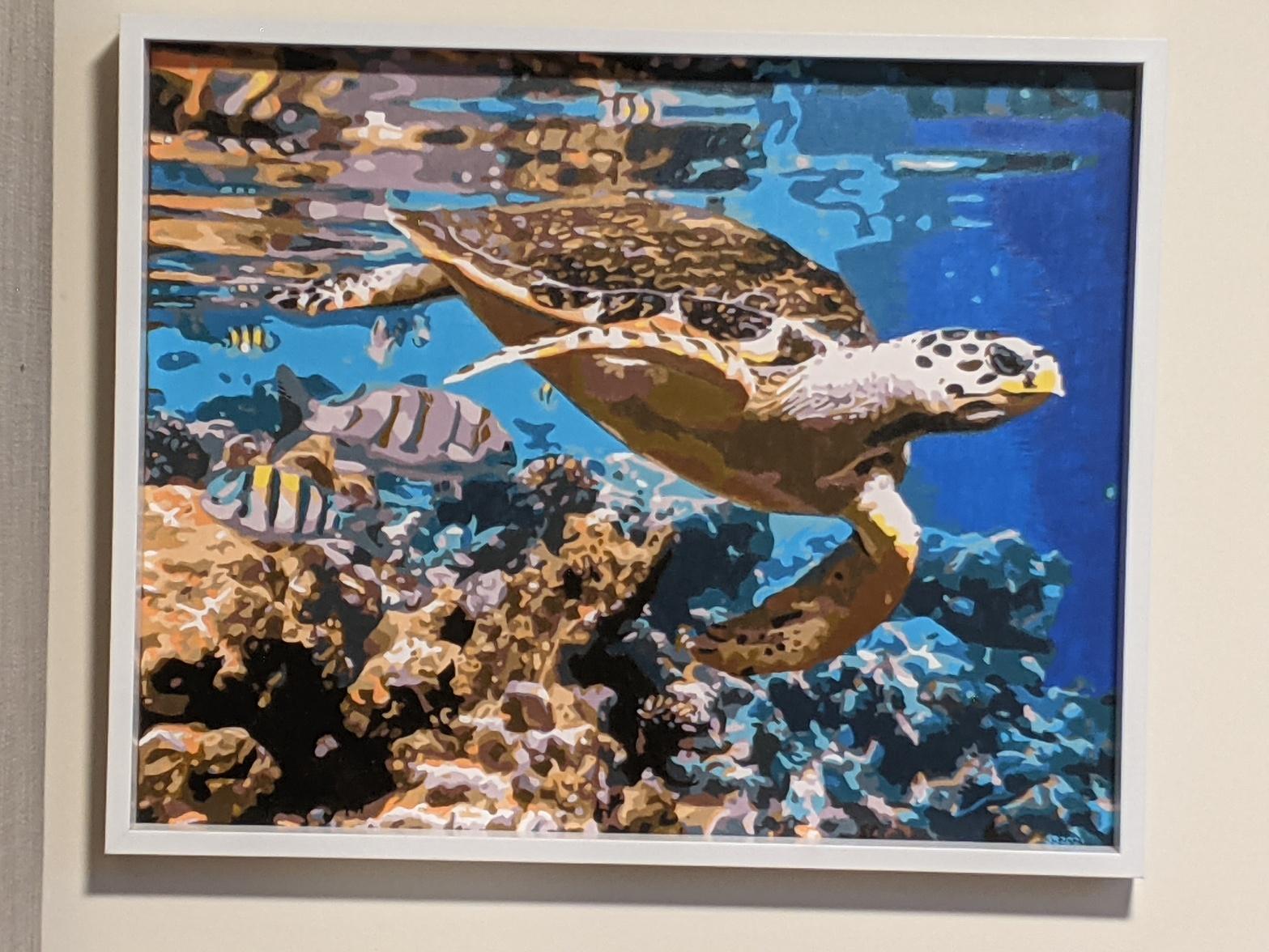 Sea Turtle | Sandra Burns Art (PBN)