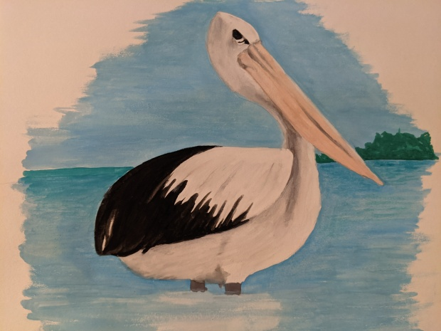Pelican water colour sketch | Sandra Burns Art