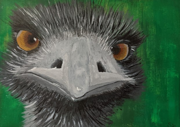 Eddie The Emu | Sandra Burns ART