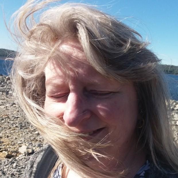 windy day   Sandra Burns Art